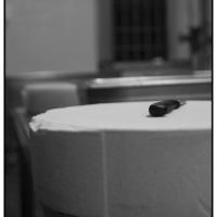 Galleria fotografica - Gallery 1